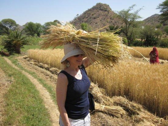 Rajasthan Trekking - Day Treks: trekker attempting to carry wheat