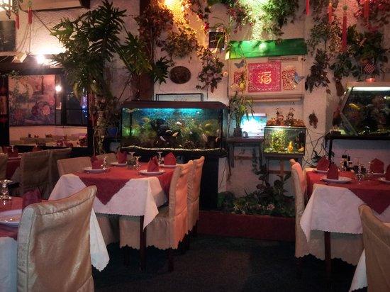 Chung Shing: restaurant