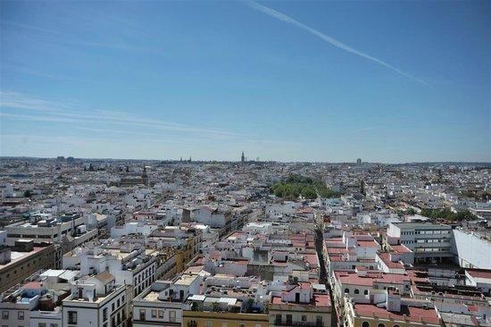 Cámara Oscura: Sevilla