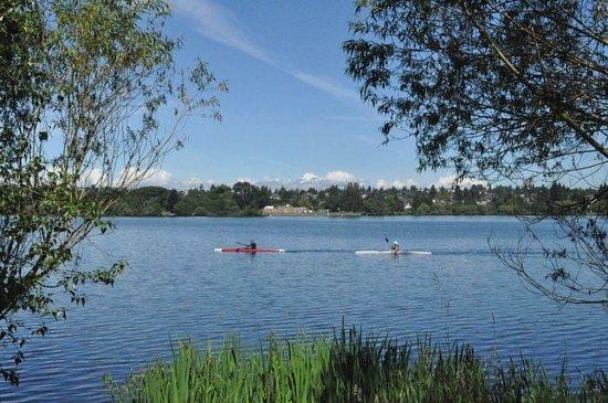 Voga sul Green Lake Park