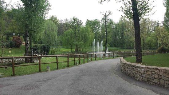 Giardino con laghetto picture of da vittorio brusaporto - Giardino con laghetto ...