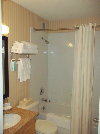 Comfort Suites Michigan Avenue / Loop: BathRoom