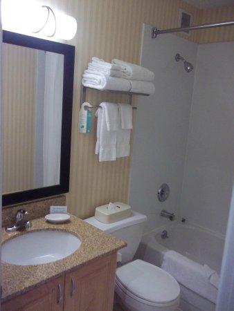 Comfort Suites Michigan Avenue / Loop: Bathroom
