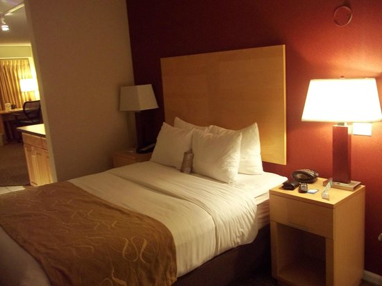 Comfort Suites Michigan Avenue / Loop: Room