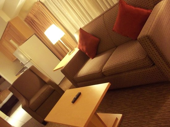 Comfort Suites Michigan Avenue / Loop : Sofa