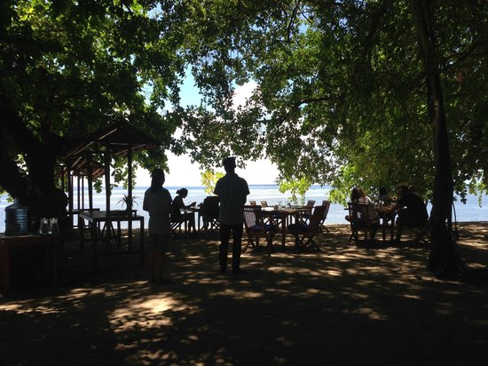 Siladen Resort & Spa: Lunch under the Banyan tree