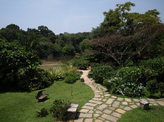 Flameback Lodges: View from dining area
