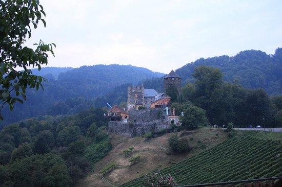 Burgmuseum Deutschlandsberg : vista del Burgmuseum