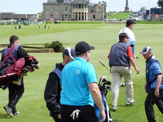 Connoisseur Golf