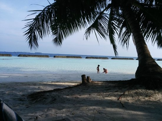 Kurumba Maldives: just 100ft from room