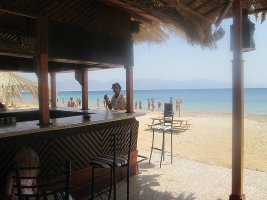 Nuweiba Coral Resort: Cold beer daily