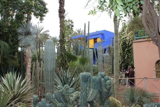 Riad Ambre et Epices : Jardin Marjorelle