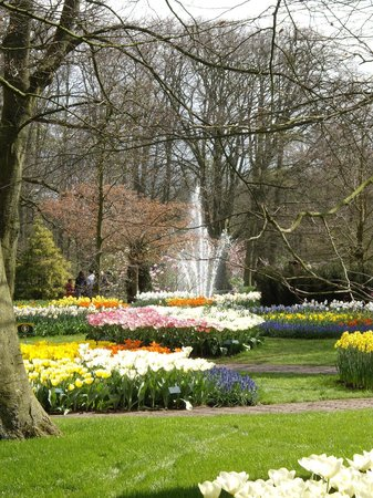 Lisse, Niederlande: Keukenhof in early April