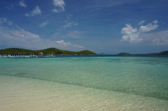 Coral Bay Beach & Dive Resort : Coral Bay