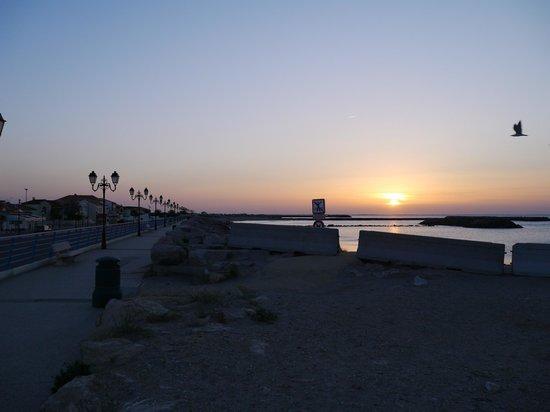 Le Mas de Cocagne : 海岸のロンポワン近くで