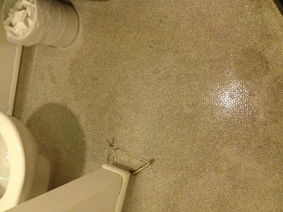 YHA London Central : Wet floor