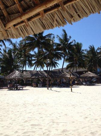 Jangwani Seabreeze Resort: Beachside