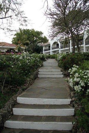 Diani Sea Resort : Hotel Grounds