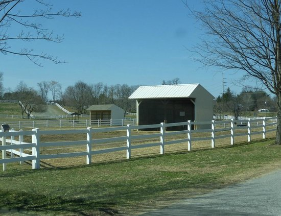 Fields Fences Carousel Park Equestrian Center
