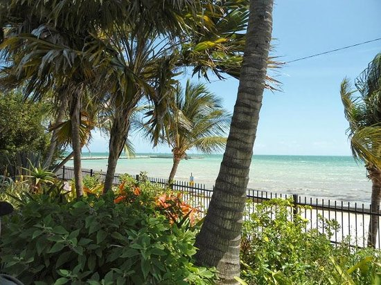 Key West Garden Club: view of the ocean from the garden