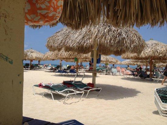 Tropicana Aruba Resort & Casino : Get out early .. need the shade