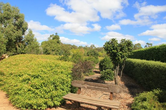 Amaze'n Margaret River: The grounds