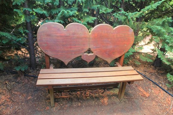 Amaze'n Margaret River: Heart shaped chair