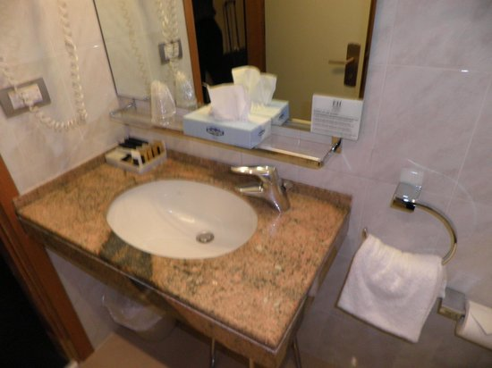 FH Grand Hotel Palatino : Bathroom in our room.
