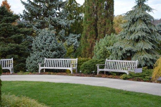 Vista Lateral Lago Picture Of Chicago Botanic Garden Glencoe Tripadvisor