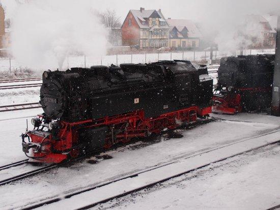 Harzer Schmalspurbahnen: 在雪中更美
