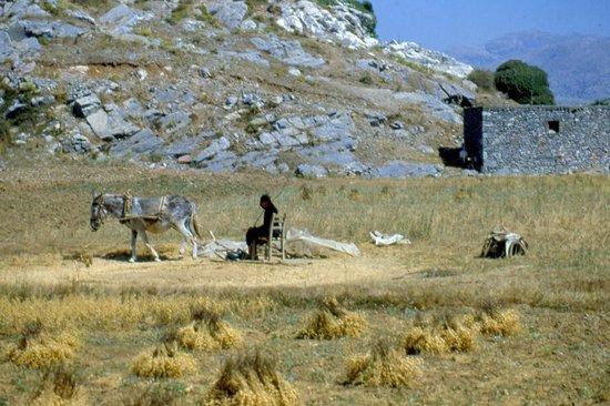 shangri-la - Picture of Lassithi Plateau, Lasithi ...