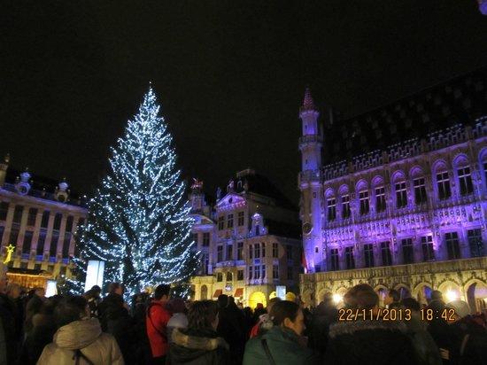 Grand Place/Grote Markt: la mairie de nuit avec le sapin