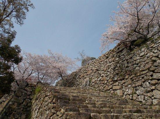 Sumoto Castle: 洲本城の石垣