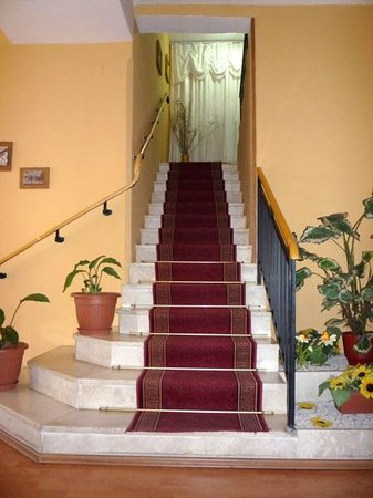 Hotel Palma: STAIRS