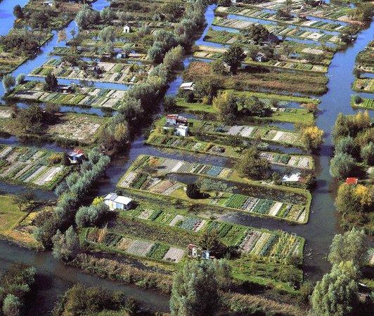 Marais bourges foto de bourges cher tripadvisor - Office de tourisme bourges ...
