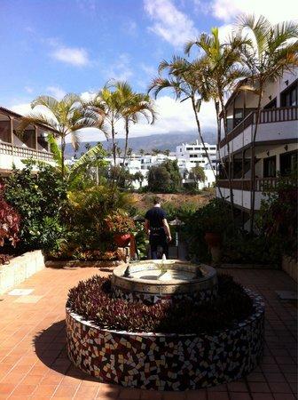 Hacienda Del Sol: Love!