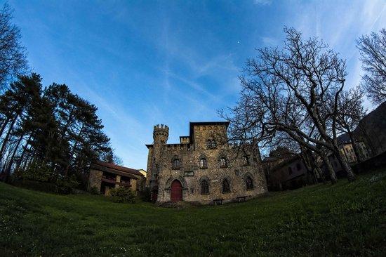 Castello Manservisi : Veduta dal giardino sul retro