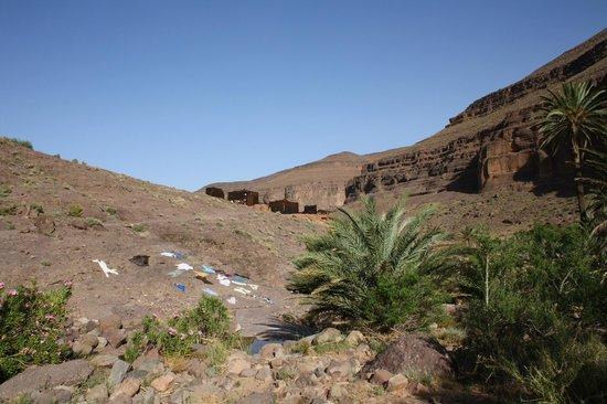 Ouednoujoum Ecolodge: ecolodge