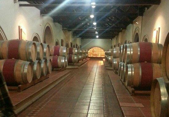 Trout & Wine Tours: Barrel room