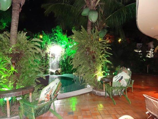 Amazon Plaza Hotel: Piscina Minúscula