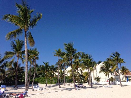 Melia Nassau Beach - All Inclusive: Beach is awesome!