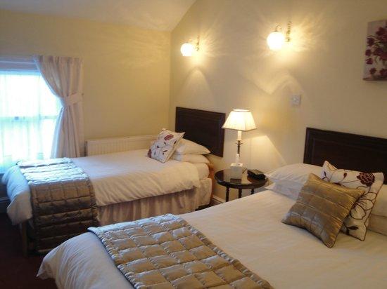 Longview Hotel : Standard family room