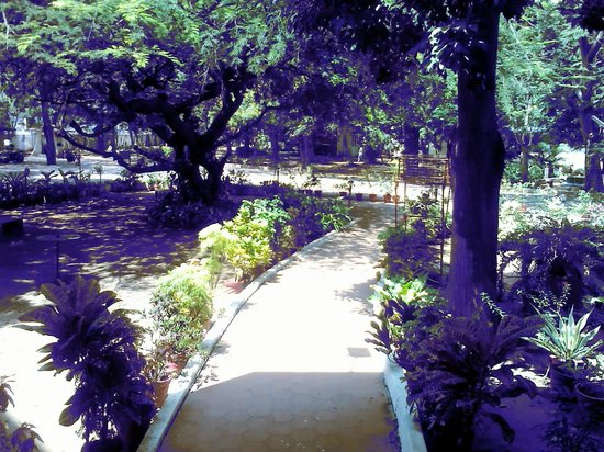 YWCA Guest House: Path to garden