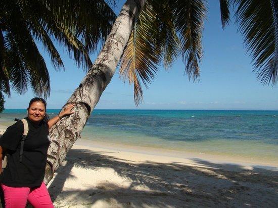 Idylle Beach: Qui veux aller chercher les cocos?