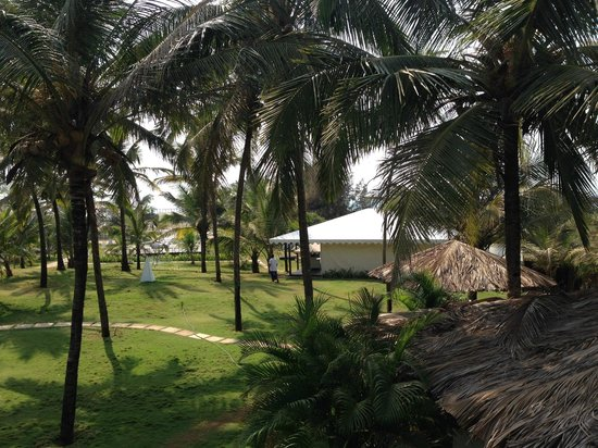 Marbela Beach Resort : View from the room