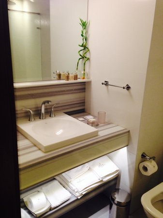 Recoleta Grand : Baño habitacion 208