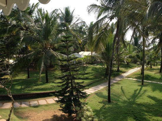 Marbela Beach Resort : The green view from the room
