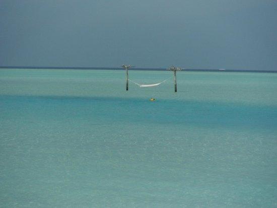 Anantara Dhigu MaldivesResort: インフィニティ・プールからの眺め