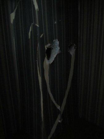 Hotel Aquarium: buchi nell'armadio