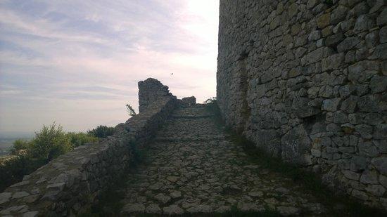 Ruine du château de Saint-Victor-la-Coste, 12 siècle